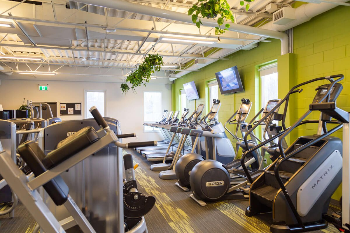 Forest-City-Gym-Cardio-Equipment